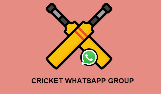 cricket whatsapp group